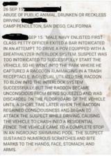 report of raccoon and interlock