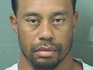 stopped for dui tiger woods
